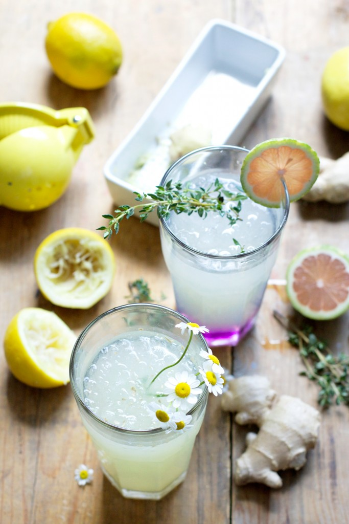 Elevated-Lemonade